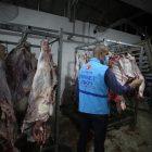 TDV'den Filistin Gazze'de 4 bin 500 aileye kurban eti dağıtımı